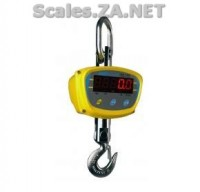 LHS Crane Scales for sale